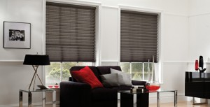 pleated-blinds-apex-blind3